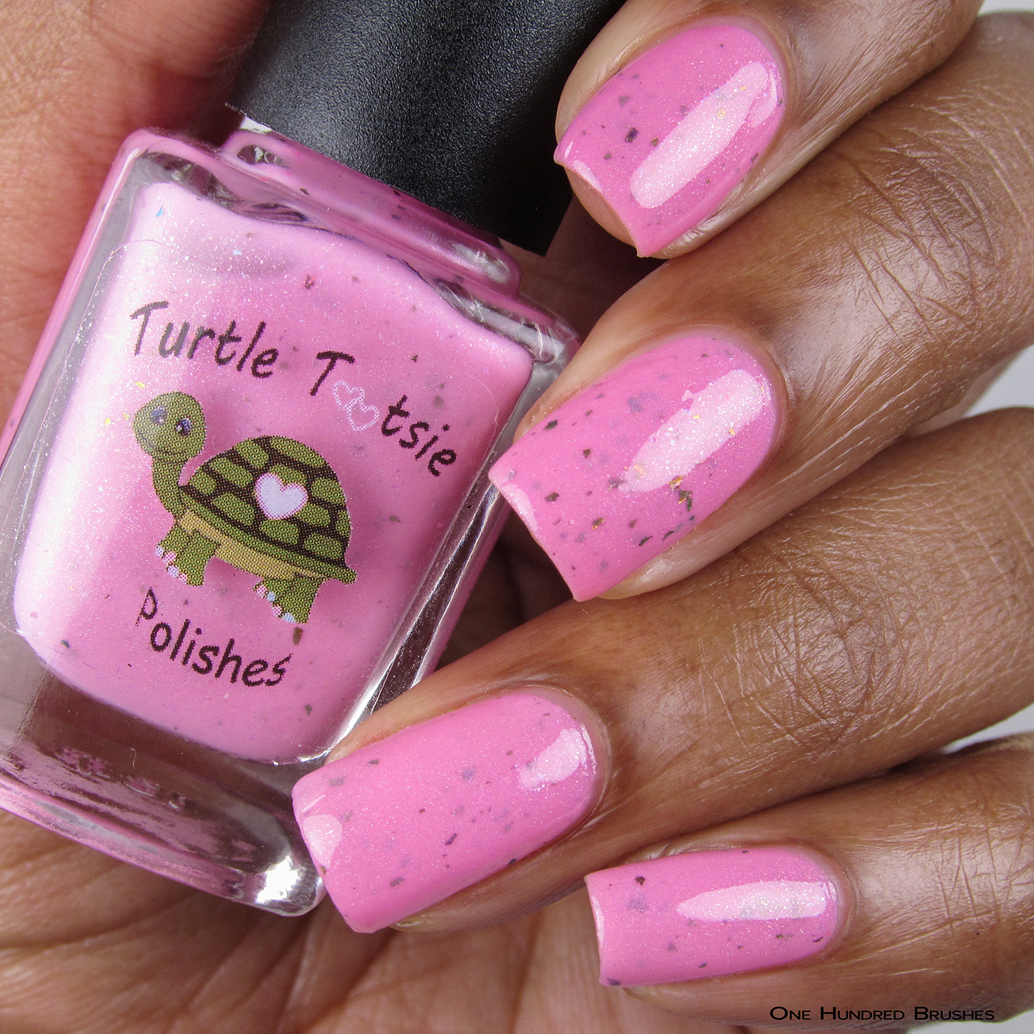 Shipoopi - Turtle Tootsie Polishes - Polish Pickup Aug 2018