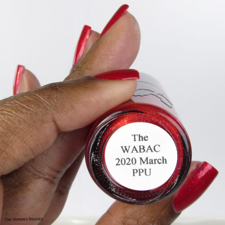 The WABAC - Necessary Evil Polish - Polish Pickup March 2020